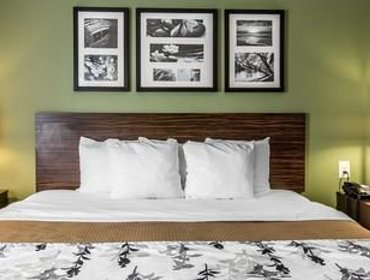 Апартаменты Sleep Inn & Suites Mount Olive